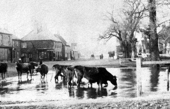 The Cock Pond and the Old Cock Pub c 1880s