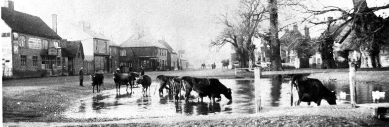 The Cock Pond and the Old Cock Pub, c1880s
