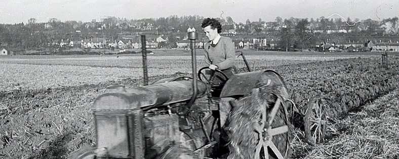 Ploughing on Harpenden Common in WWII