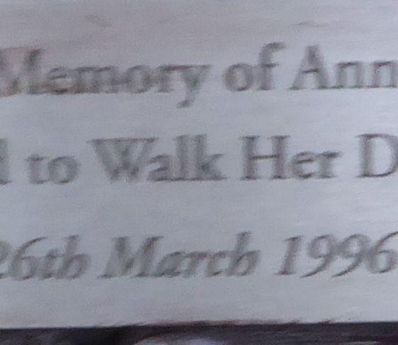 Ann Drysdale, Rothamsted Park