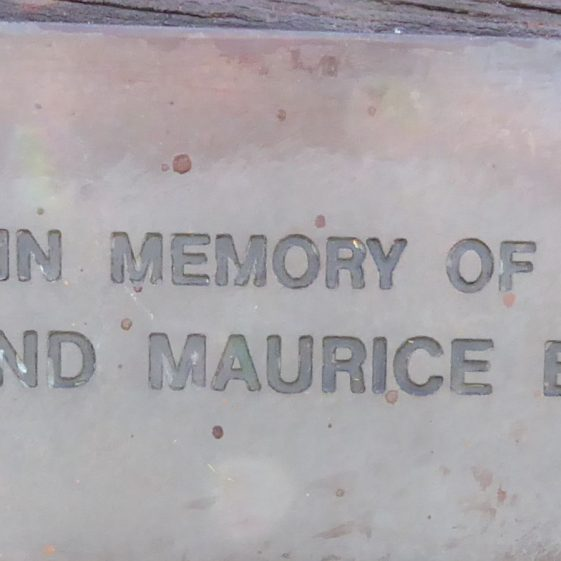 Dot and Maurcie Evans, Cricket Ground on Common