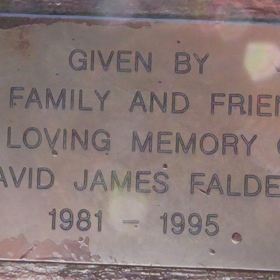 David James Falder, Leyton Green