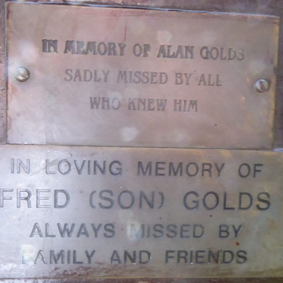 Fred and Alan Golds, Southdown Ponds