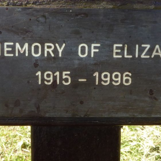 Elizabeth Hardy, Baa Lamb Trees