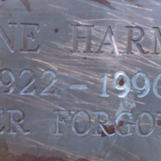 Irene Harmer, Garden at St Nicholas