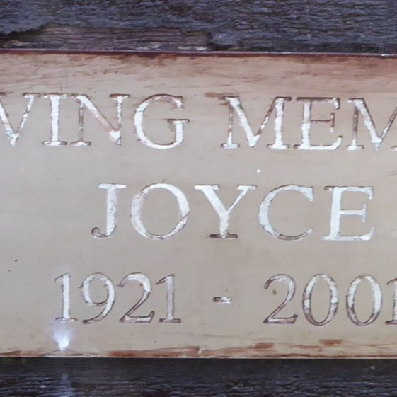 Joyce, Rothamsted Park play area