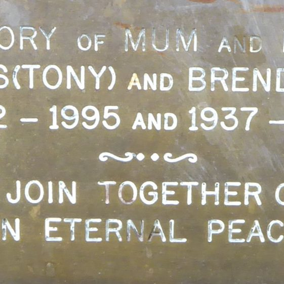 Edward and Brenda Martin, Common by St John's Church