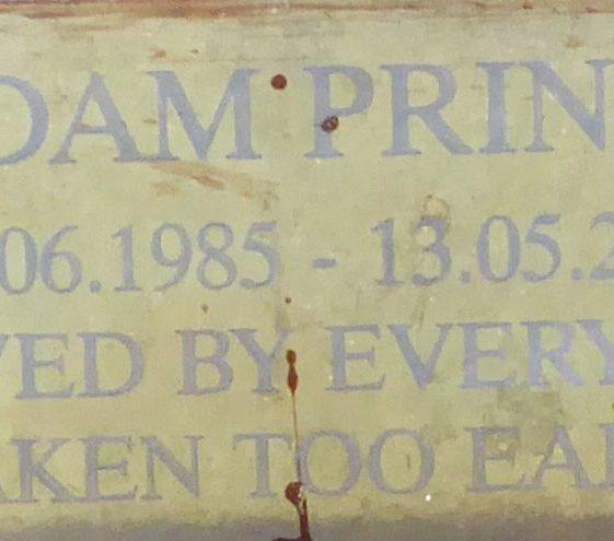 Adam Prince, Common by Brickle Dells, Walkers Road