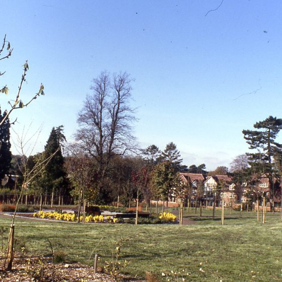 Lydekker Park - newly planted in March 1993 | Cat no LHS digitised slides 51