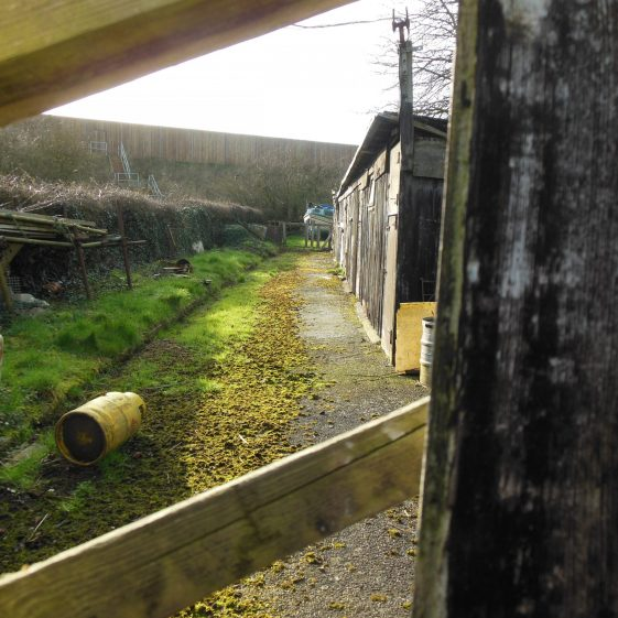 21. Line of ditch along Old Farley Lane, private and inaccessible. M1 in background; underpass to the right. | Rosemary Ross, March 2014