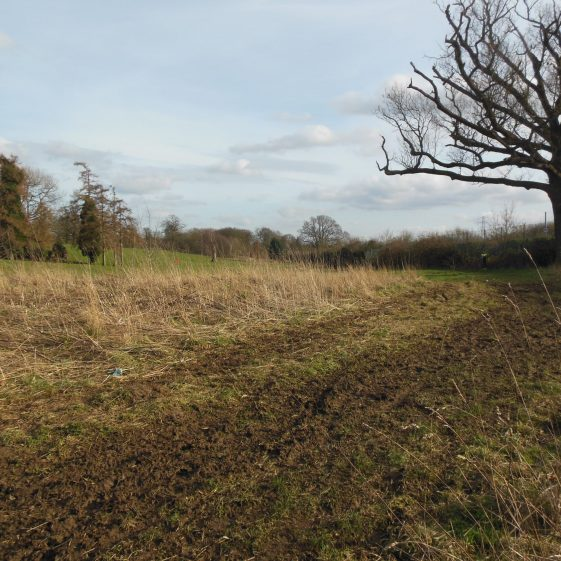 27. View SE from pond at Farley Green, along Stockwood Park boundary | Rosemary Ross, March 2014
