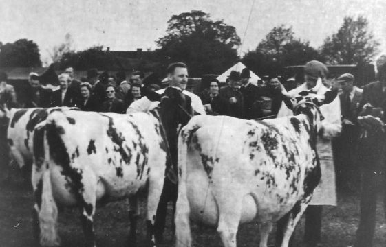 The Demise of the Dairy Industry and Changes in Land Use in the Harpenden Rural area