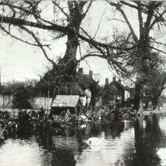 Pond and Swans' house -1910's | Cat no Slides B 1.20