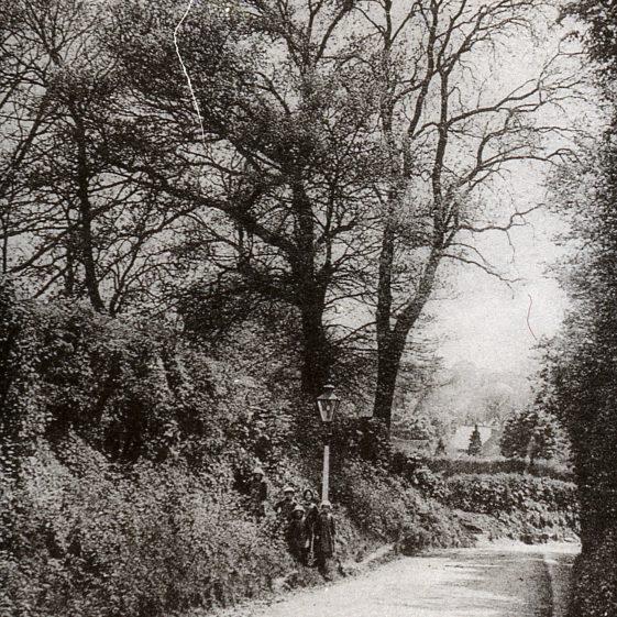 Sun Lane looking west - 1920's   Cat no Slides B1.3
