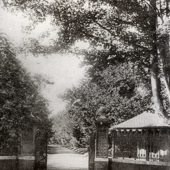 Gates to Rothamsted Park, c1890.  The Lime tree avenue had been planted in 1880.  From 1901 the Park was open to the public on Sundays.  It was transferred to Harpenden Urban District Council in 1938.  Click on photo for link to page about the Park   LHS archive, cat. no. B 1.60