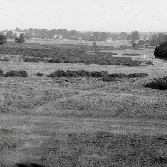View of Harpenden common, looking north, from Ernest Heasman's house on East Common - a view he painted many times and in many seasons   LHS archives, cat.no. B 3.20