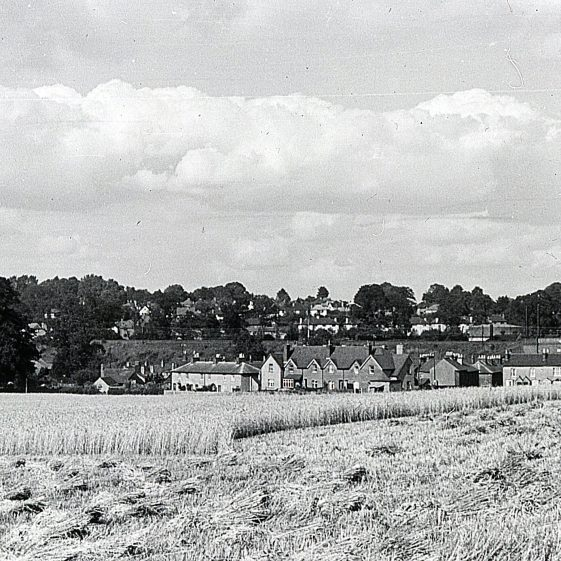 The Common under cultivation - cereals - 1943 | Cat no Slides B 3.31