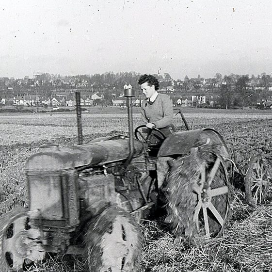 Tractor ploughing on the Common - Jan 1944 | Cat no Slides B 3.32