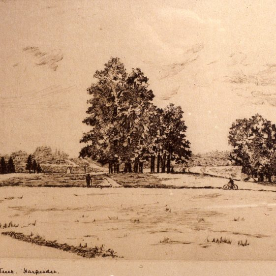 Baa Lamb trees and common - 1900 -watercolour by A T Mardall | Cat no Slides B 3.83