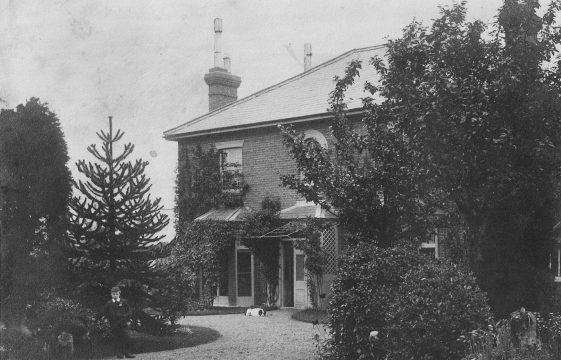Elmes Family of Coleswood House