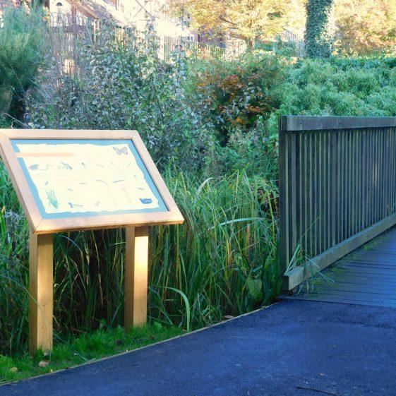 The wildlife board