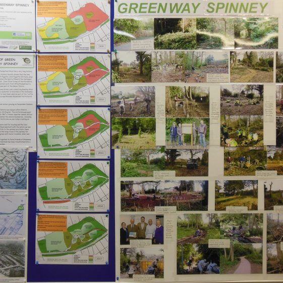 Greenway Spinney   R Ross, 1 March 2018