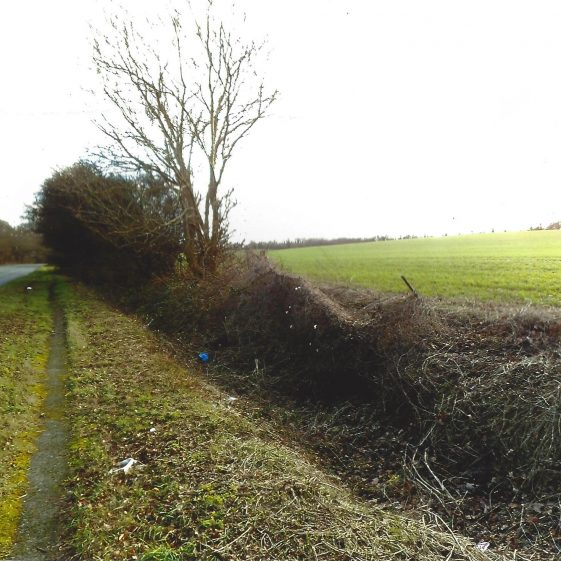 34. A substantial drainage ditch alongside the A1081, near to Gibraltar Farm - looking SE | LHS archives - L Casey, Jan 2015