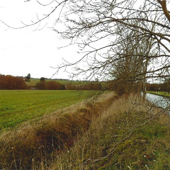 45. Drainage ditch alongside The Common, Kinsbourne Green | LHS archives - L Casey, Jan 2015