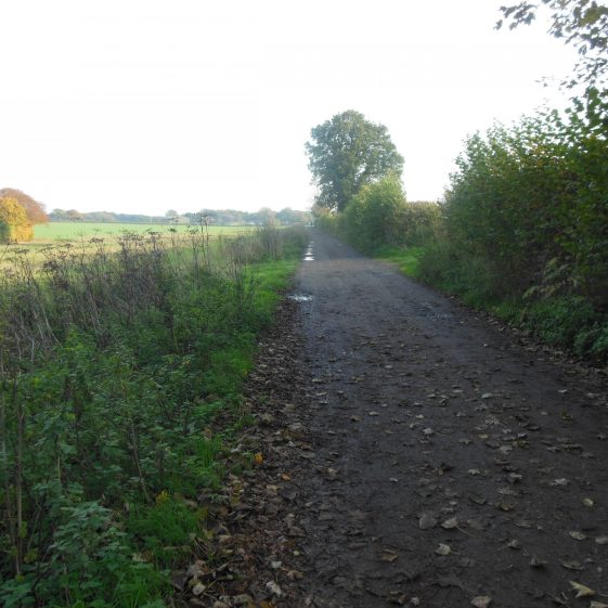 84. A straight track leads all the way to Waterend Farm | R Ross, October 2015