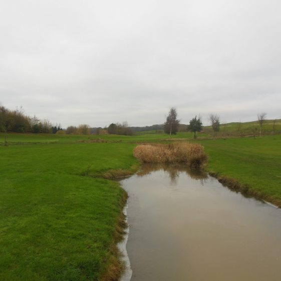 11. Caddington Golf Course - looking WNW, with Zouches Farm behind the copse on the left | Rosemary Ross, 1 November 2015