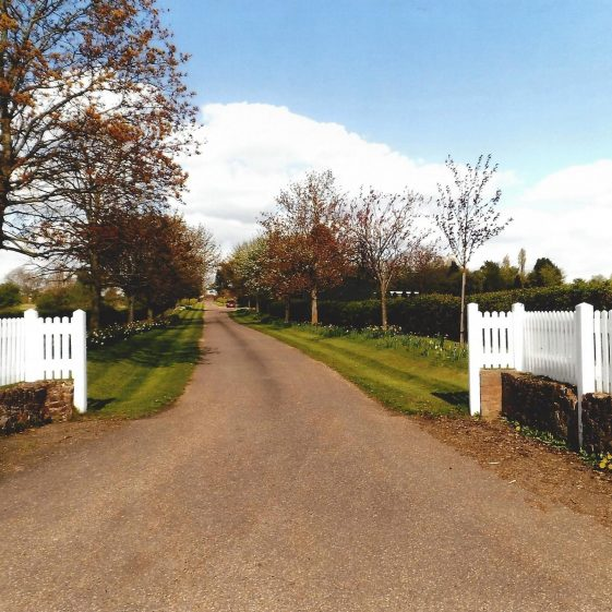 97. A gently sloping drive leads up to Nomansland Farm at Grid ref. 172127 | L F Casey, 2014
