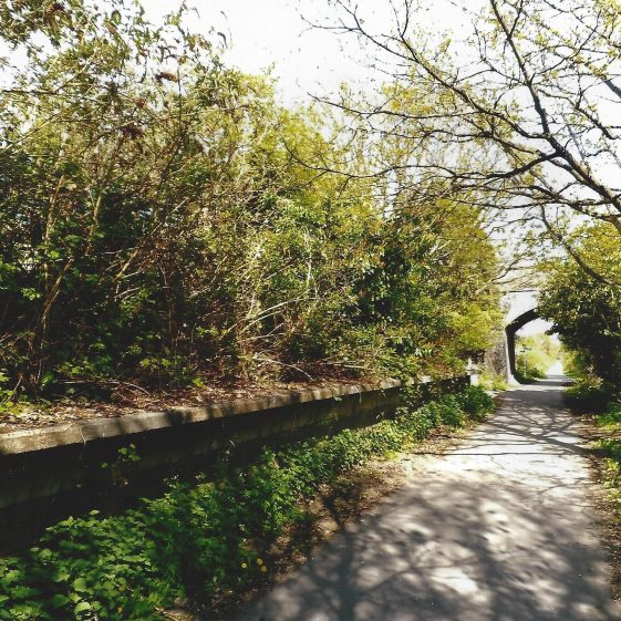 112. Alban Way near Smallford station platform | Les Casey, 2014
