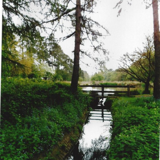 67. The channel flows into the first pond | L Casey