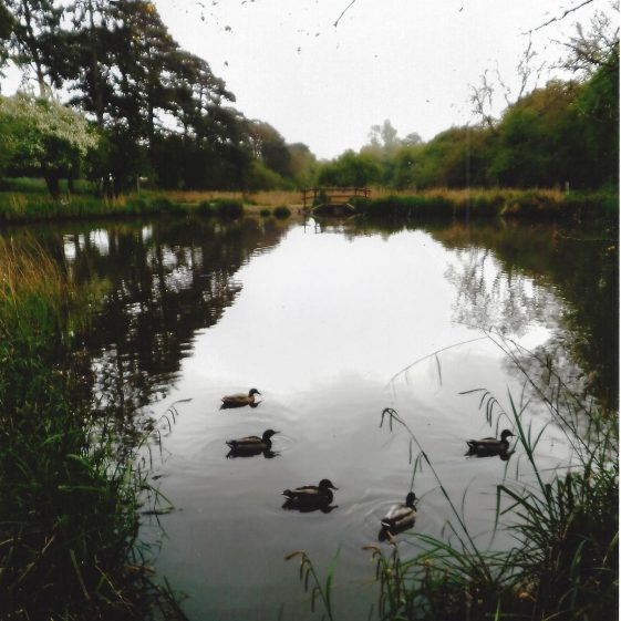 68. The first pond, looking south | L Casey