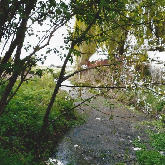 111. The old watercourse alongside the nurseries at Smallford comes to and passes under the old railway track, now Alban Way at Grid ref. 195071 | L F Casey, 2014