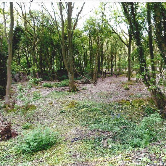 87. Gravel pits in Nomanland Common alongside Ferrars Lane | LHS archives - L Casey, Aug 2014