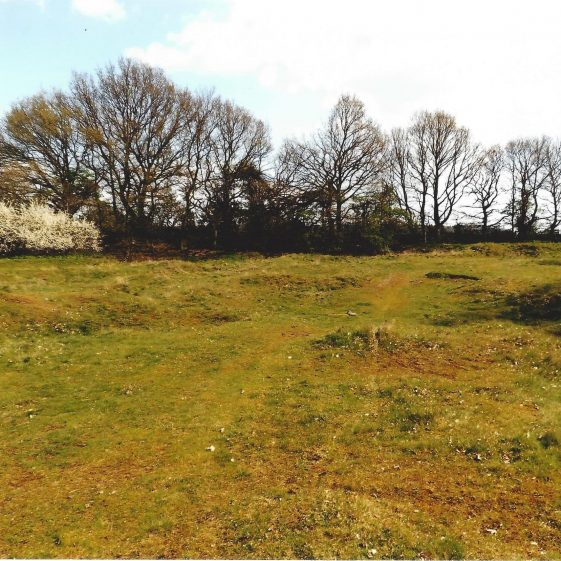 92. Gravel pits alongside Drovers Lane, Nomansland Common - Grid ref. 175123 | LHS archives - L Casey, Aug 2014 LH 141157