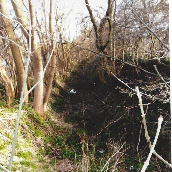 48. Southern end of gravel pit alongside Luton Road, near Ridgewood Drive | LHS archives - L Casey, Jan 2015