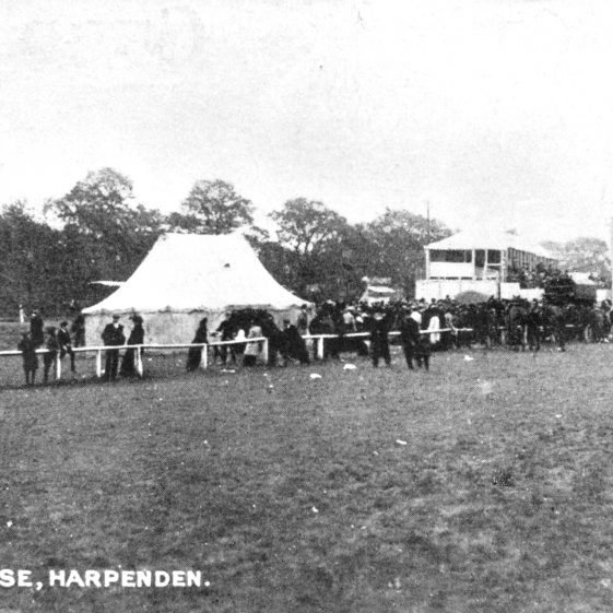 The races - marquee and grandstand - pre 1914 | Cat no HC 159