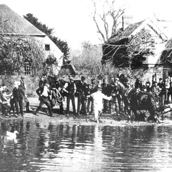Horse and cart being rescued fro the Cock Pond -1900's | Cat no HC 180