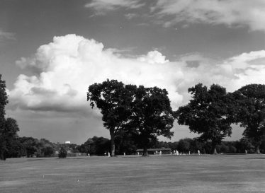 Cricket in Rothamsted Park Sept 1981 | E Meadows
