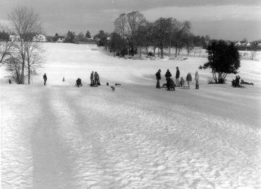 Rothamsted Park 2nd Jan 1979 | E Meadows