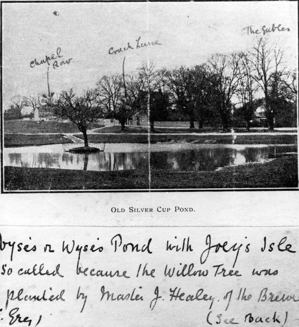 The Recently Constructed Pond on Harpenden Common