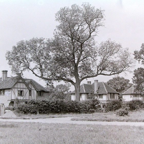 75 and 74 West Common - the first phase of the Harpenden Estate | Jim Jarvis - scanned from glass negative by J Marlow