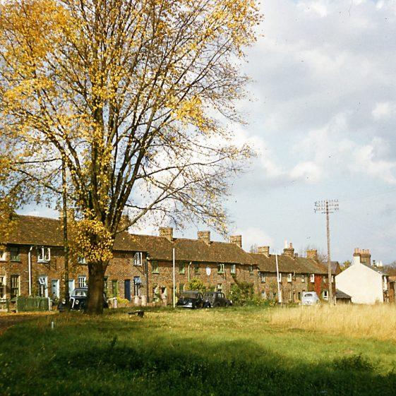 Pimlico cottages, West Common, 1953/53   LHS archives - JJ 016