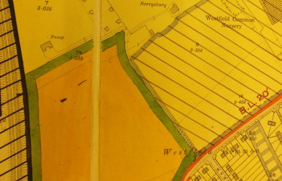 Memories of Highmoor, Westfield Common in the 1920s and 1930s