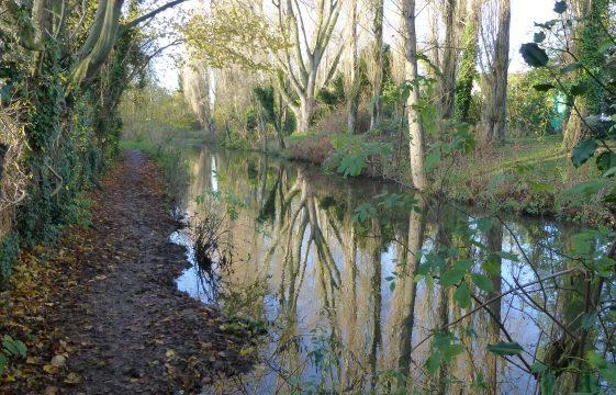 Batford Springs: Harpenden's local nature reserve