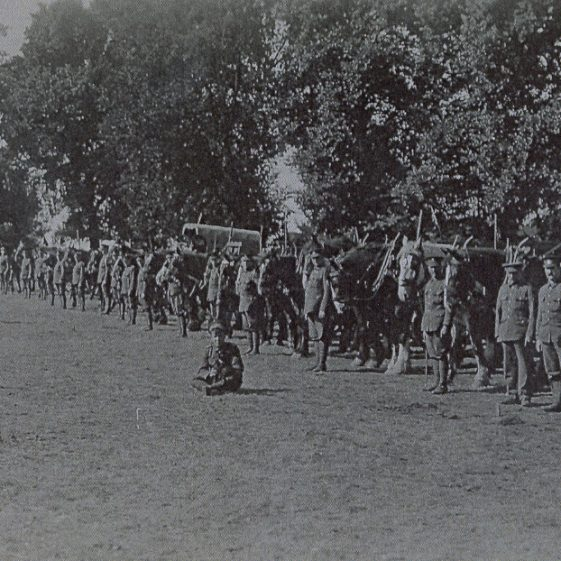 17.  6th Battalion - transport lines on Harpenden Common, 1914 | Michael Briggs - SF10-MB