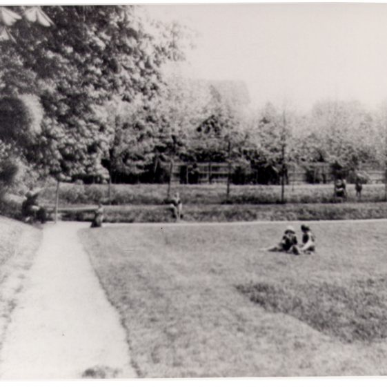 St Helena's - the lawn | Harpenden UDC Collection