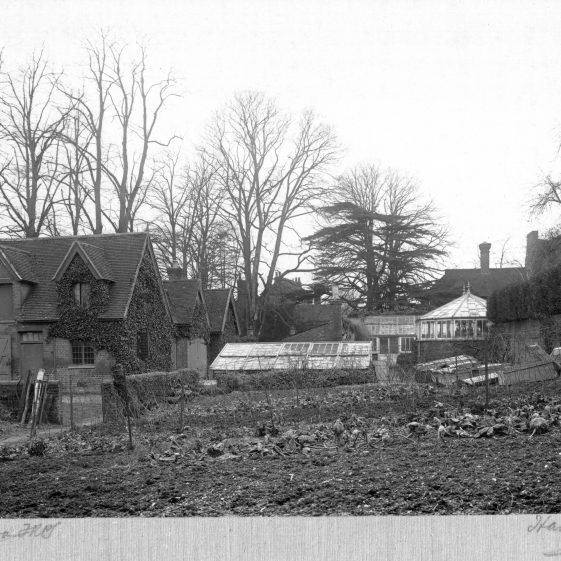 18 Gardener's and coachman's cottages facing the Common, with glass-houses and Welcombe in the background   LHS archives - Thurston Album 17